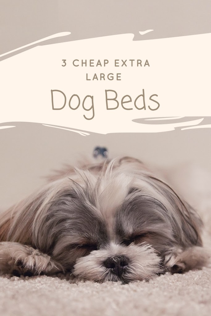 Cheap Extra Large Dog Beds My Sleek Home