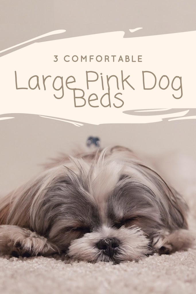 comfortable dog beds large pink dog bed my sleek home